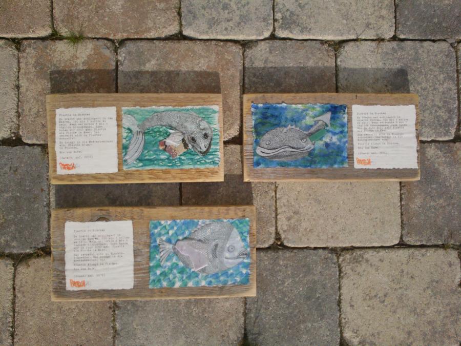 Plastik in Fischen | Serie 3 - 2 - 2